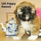 Girl Puppy Names