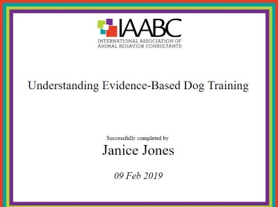 Understanding Evidence-Based Dog Training Certificate