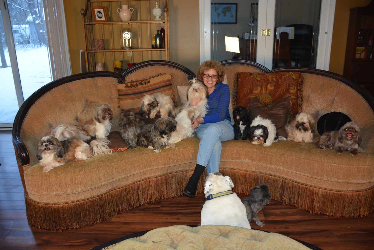 Janice Jones and dogs