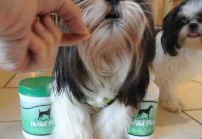 NuVet Plus Canine Supplement