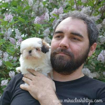 Aaron Jones and Shih Tzu Puppy from Miracle Shih Tzu