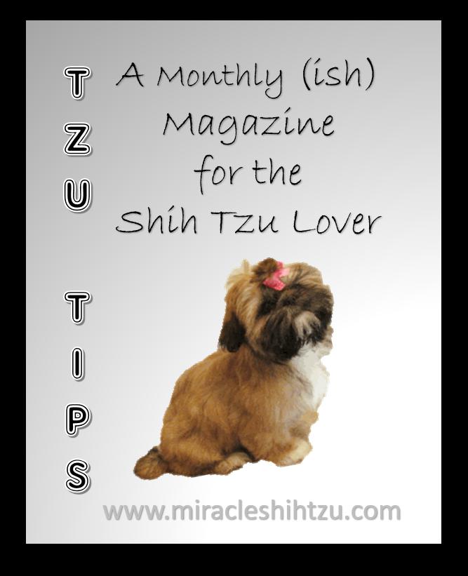 Tzu Tips:  Shih Tzu Magazine