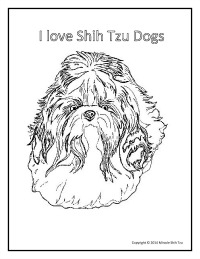It is a photo of Inventive Shih Tzu Coloring Pages