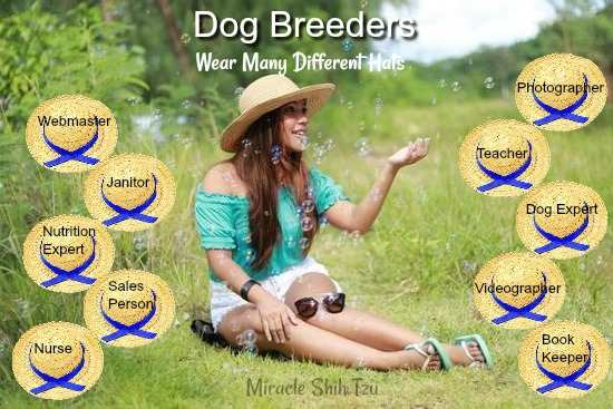 Breeding Dogs:  Skills, Knowledge and Training Needed