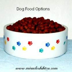 Best Dog Foods