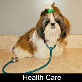 Link to Shih Tzu Health Care