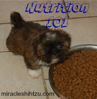 Nutrition 101 Link