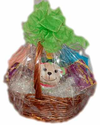 A Homemade Puppy Basket makes a great gift for a Shih Tzu Puppy Shower