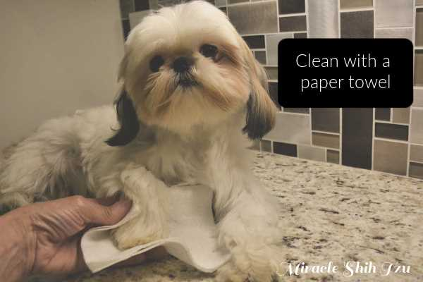 Wipe dry with a paper towel.