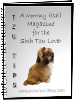 Tzu Tips:  Shih Tzu Magazine