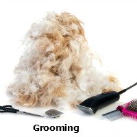 How to remove mats from your Shih Tzu's coat