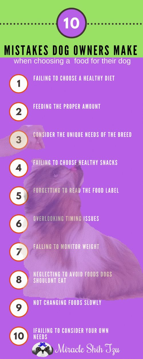 Ten Common Mistakes People Make When Choosing their Dog Food Infographic