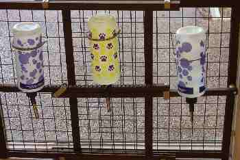 Three dog water bottles set up on an infant gate.